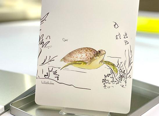 10 Karten - Wunderbare Tierwelt